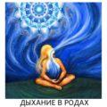 Программа онлайн курса ЗаРоды.ру